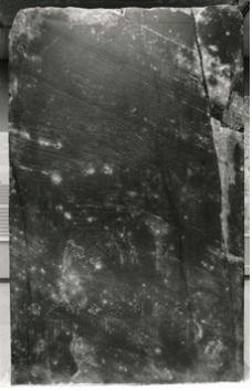 image01-2.png